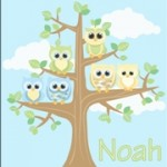 Personalised boys owl canvas wall art set